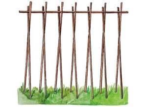 Способ подвязки фасоли
