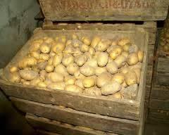 Ящик для картофеля