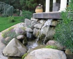 Каменистые сады: коротко о главном