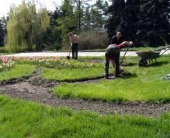 Какими работами следует заняться в саду весной