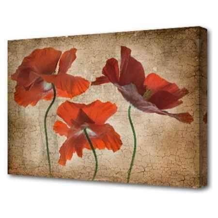 Купить Холст Топпостерс, Цветы в трещинах, 50х75 см