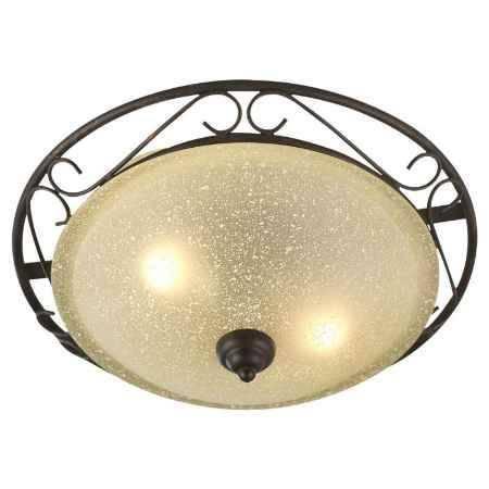 Купить Светильник настенно-потолочный GLOBO Rustica II 4413-2