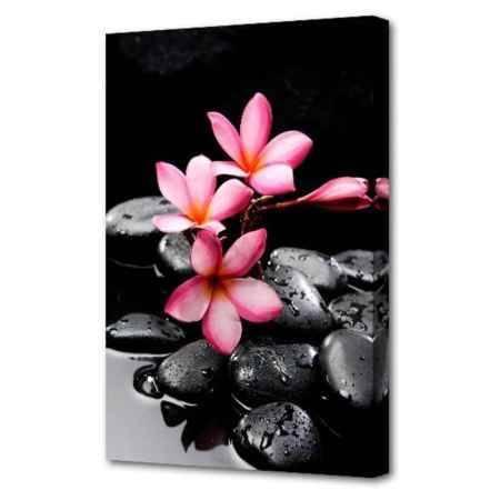 Купить Холст Топпостерс, Цветы около камней, 50х75 см