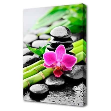 Купить Холст Топпостерс, Цветок с бамбуком, 50х75 см
