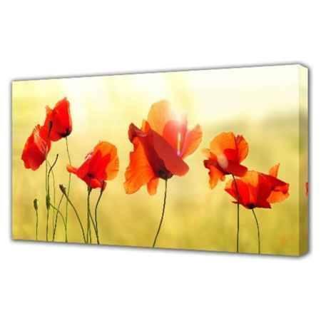 Купить Холст Топпостерс, Красные цветы II, 50х100 см