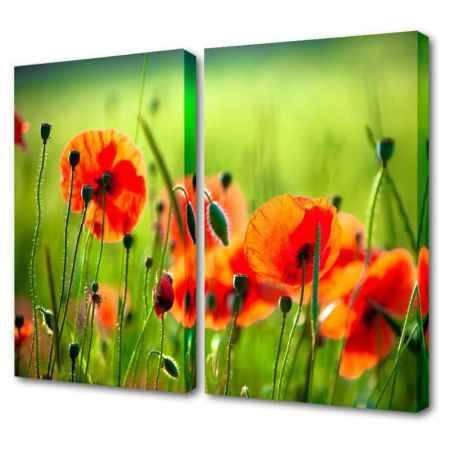 Купить Модульная картина Топпостерс, Маковые поля, 100х75 см, 2 части