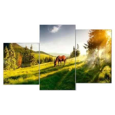 Купить Модульная картина Топпостерс, Рыжий конь, 50x78 см, 3 части