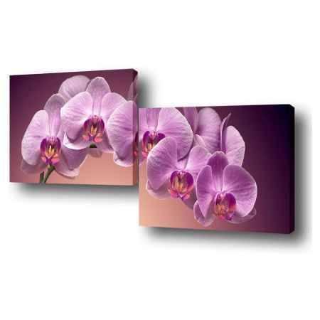 Купить Модульная картина Топпостерс, Нежность цветка, 150х50 см, 2 части