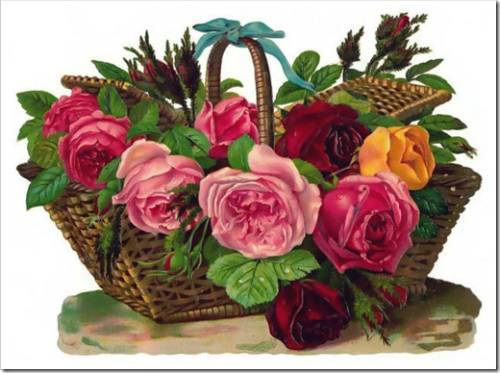 Почему коробка с цветами так стремительно набирает популярность?