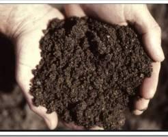 Что такое почвогрунт?