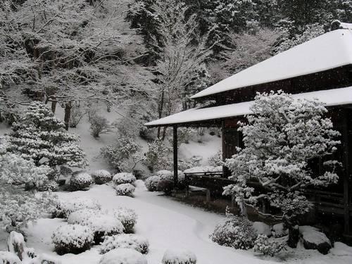 Летний и зимний уход за садом