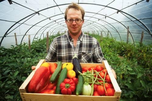 овощи из теплицы