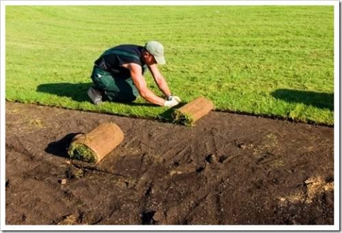 Сложности, с которыми сталкивается газон, укладываемый на склоне