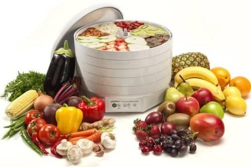 электросушилка для фруктов