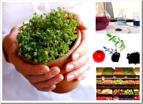 Защита растений с помощью биологических препаратов