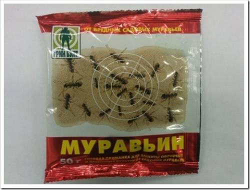 Муравьин
