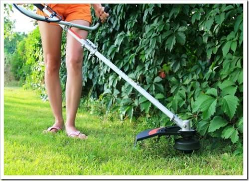 Основные критерии выбора триммера для травы