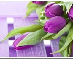 Купить цветы с доставкой теперь очень просто