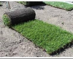 Как укладывать рулонный газон самостоятельно?