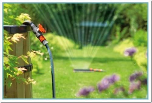 Выбор насоса для полива огорода и сада