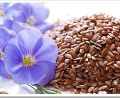 Экономим: семена в белых пакетах + обзор Интернет-магазинов семян