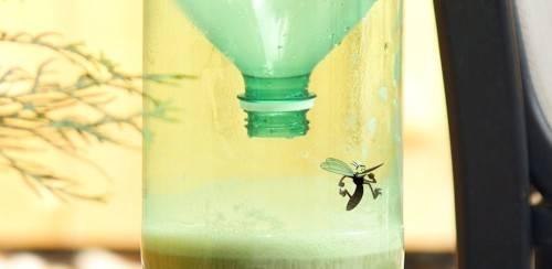 Как сделать ловушку для комаров