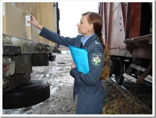 Оформление фитосанитарного сертификата на экспорт