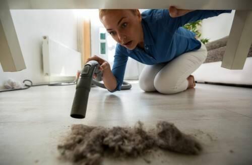 Как избавиться от домашних клещей