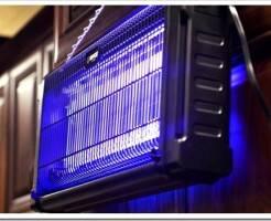 Как работает инсектицидная лампа для уничтожения насекомых?