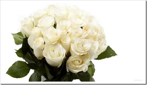 Как собрать красивый букет из роз?