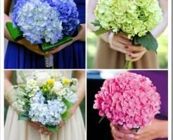 С какими цветами сочетается гортензия в букете.