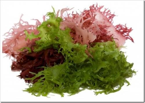 Каррагинаны: эффективность применения в мясопереработке