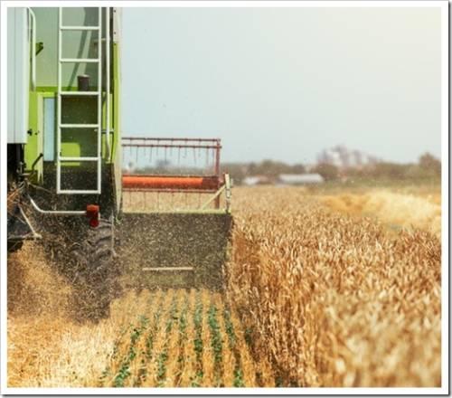 Покупка эффективных пестицидов