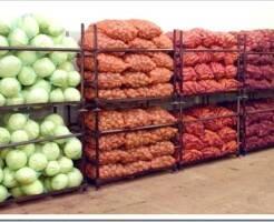 Способы оптовой продажи овощей