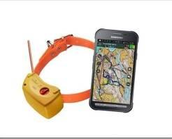 Как работает GPS ошейник для собак и как выбрать?