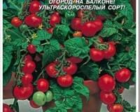 Популярные сорта томатов для выращивания на подоконнике дома