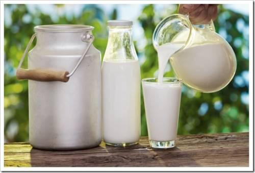 Полезно ли коровье молоко для детей
