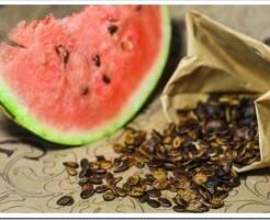 Как выбрать арбузные семена и подготовить их к посадке