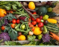 Секреты хорошего урожая: советы бывалых огородников