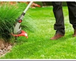 Как выбрать садовый триммер и какие виды есть