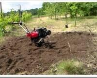 Мотокультиватор на пути к хорошему урожаю