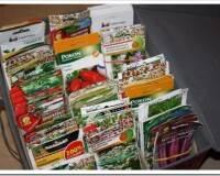 Как правильно выбрать семена овощей для дачи и как их хранить