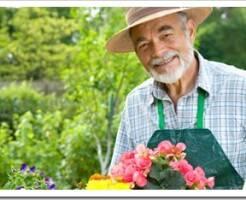 Какую работу выполняет садовник